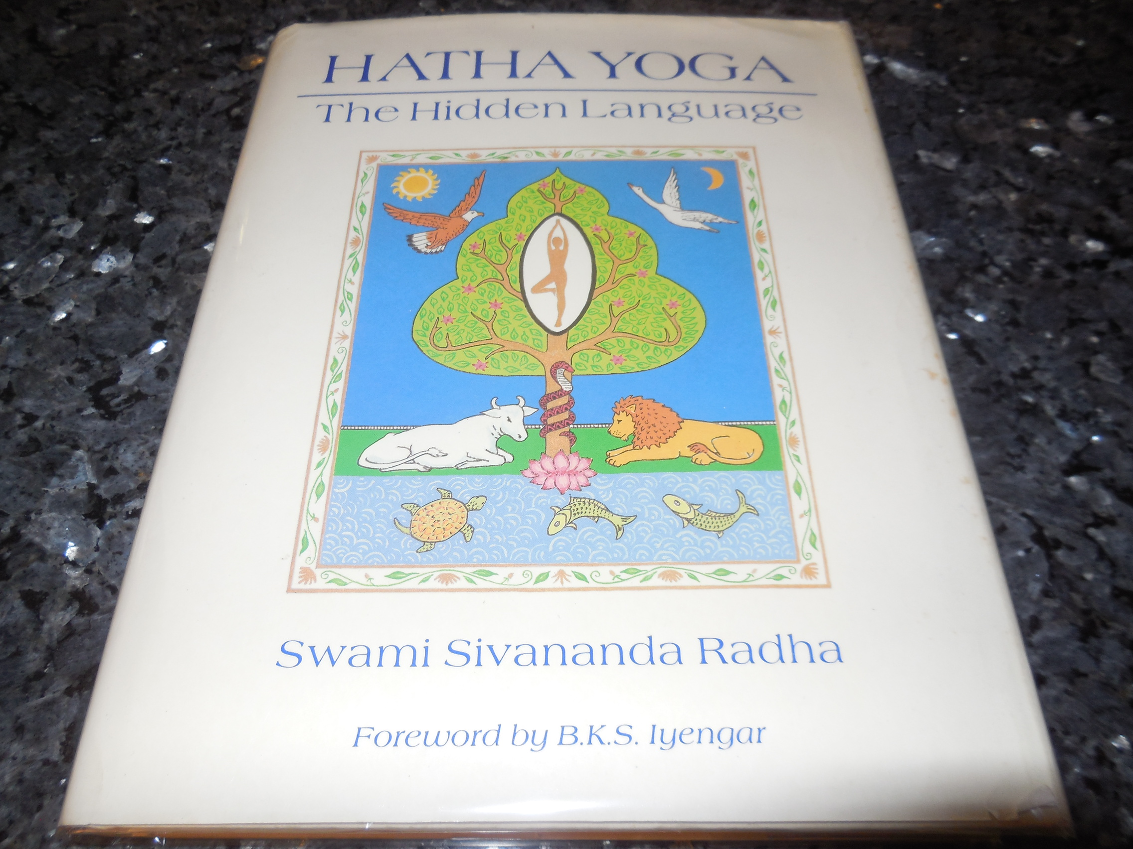 Image for Hatha Yoga: The Hidden Language : Symbols, Secrets, and Metaphor [With Illustrations]